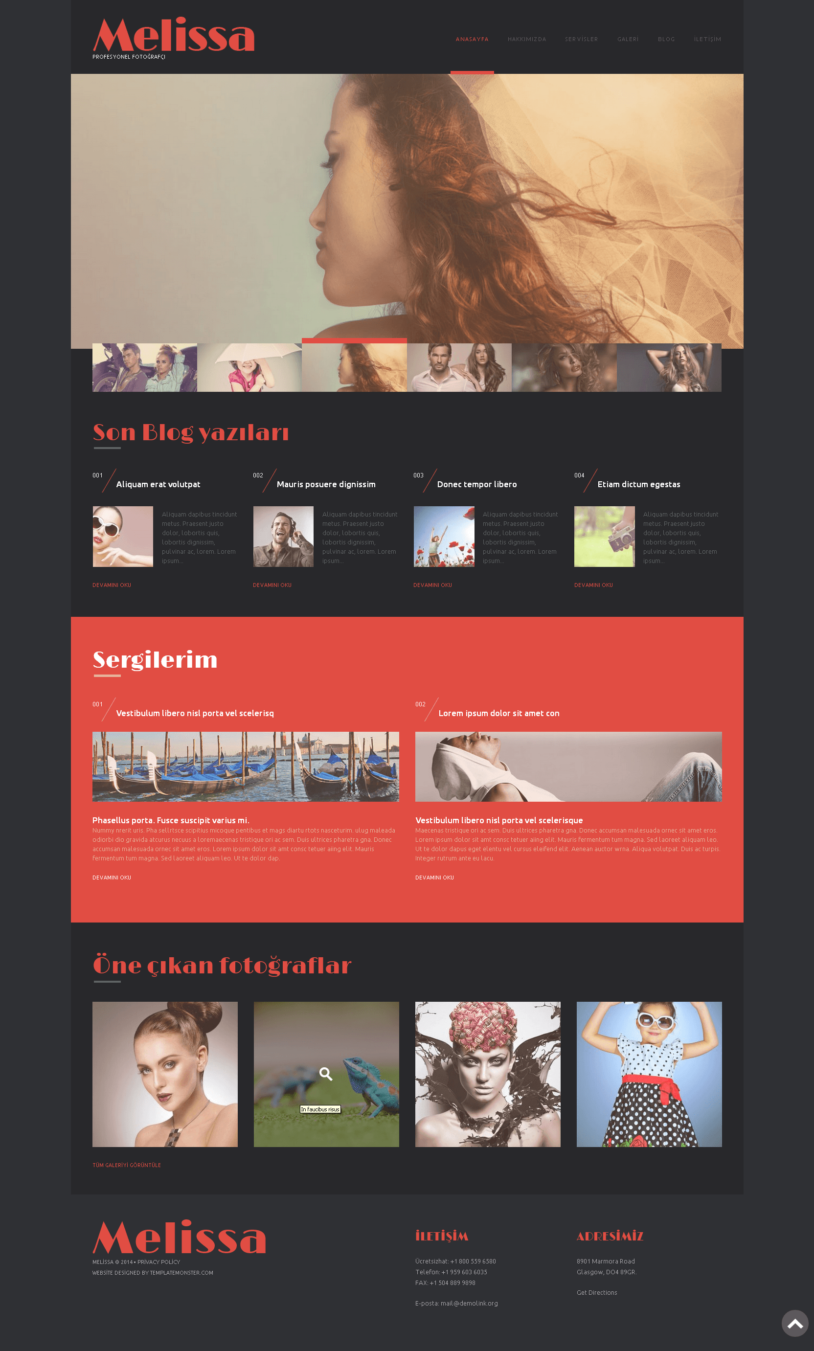 Ücretsiz WordPress Fotoğrafçılık Teması