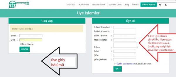 Online Tercüme'de Yıllık Beklenti 1 Milyar Türk Lirası