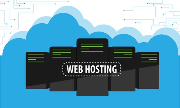 Hosting ve Domain Alırken Nelere Dikkat Edilmeli?