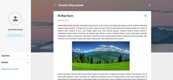 Ücretsiz Blog Nasıl Açılır ? [2019] Wordpress ve Blogger için Anlatım