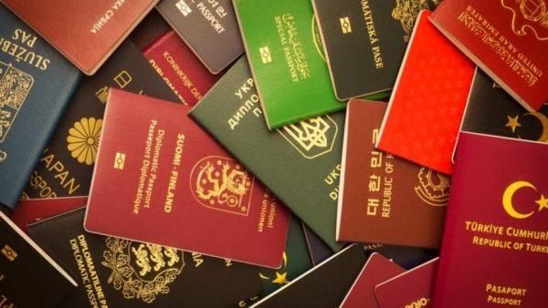 pasaport sorgulama
